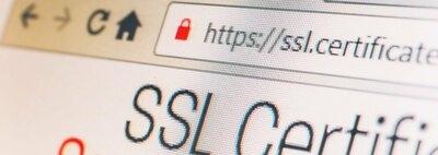 Das SSL-Zertifikat: Vier wichtige Gründe zur Nutzung